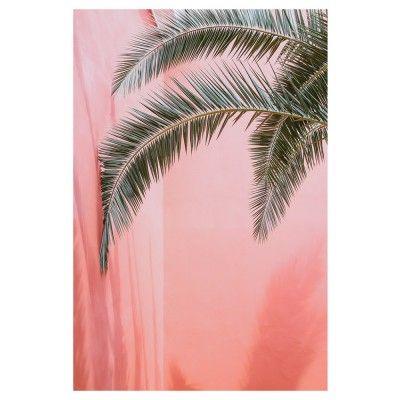 Affiche Palm on Pink David & David Studio