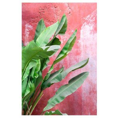 Bananiers sur mur rouge poster