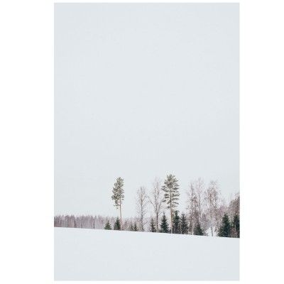 Affiche Paysages de Finlande N.3 David & David Studio