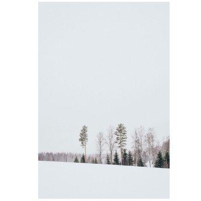 Landscapes of Finland N.3 poster David & David Studio