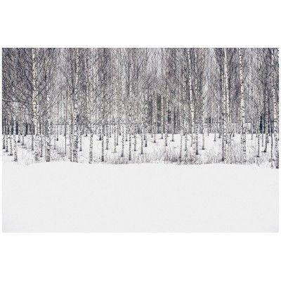 Landscapes of Finland N.4 poster David & David Studio